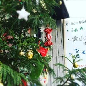 北山杉のクリスマスツリーkameyahirokiyo