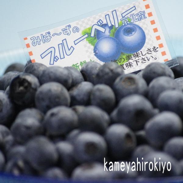 今年初の京北産ブルーベリー